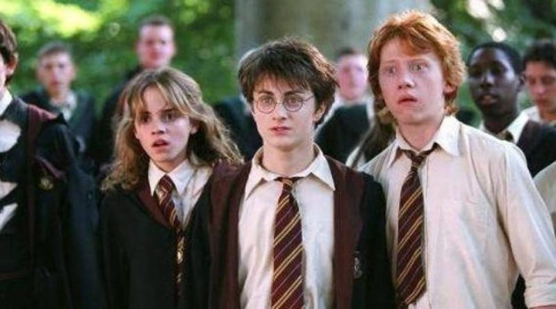 The Craziest Harry Potter Fan Theories That Could Be True