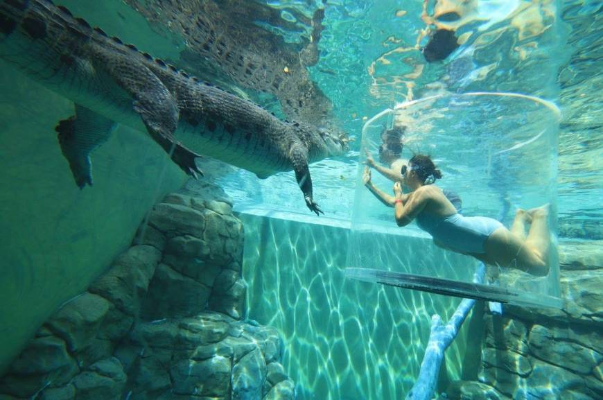 The 20 Most Terrifying Water Attractions in the World