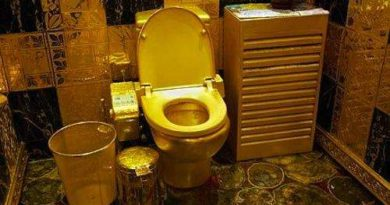 39 Bizarre Toilets From Around the World