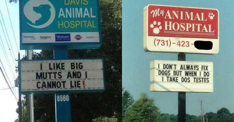 20 Extremely Clever Vet Signs