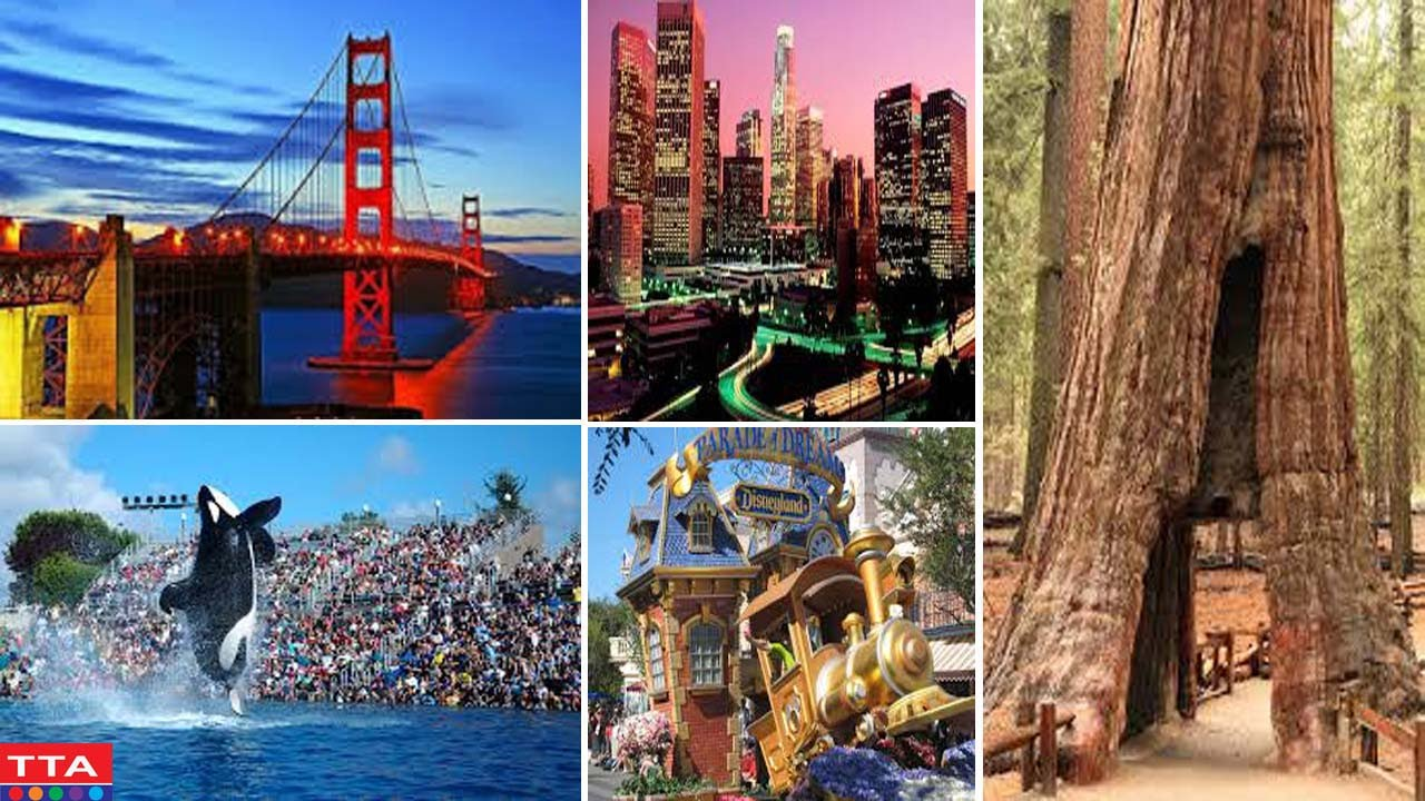 The Best Tourist Attractions in America