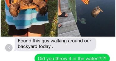 Here's Proof That Idiots Live Among Us