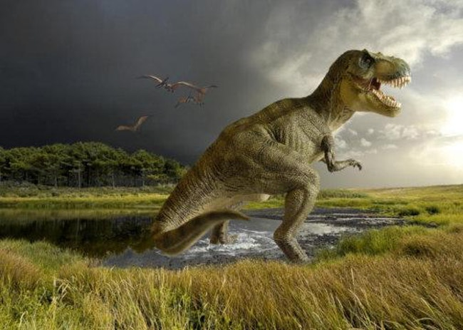 20 Myths You Were Taught About Dinosaurs