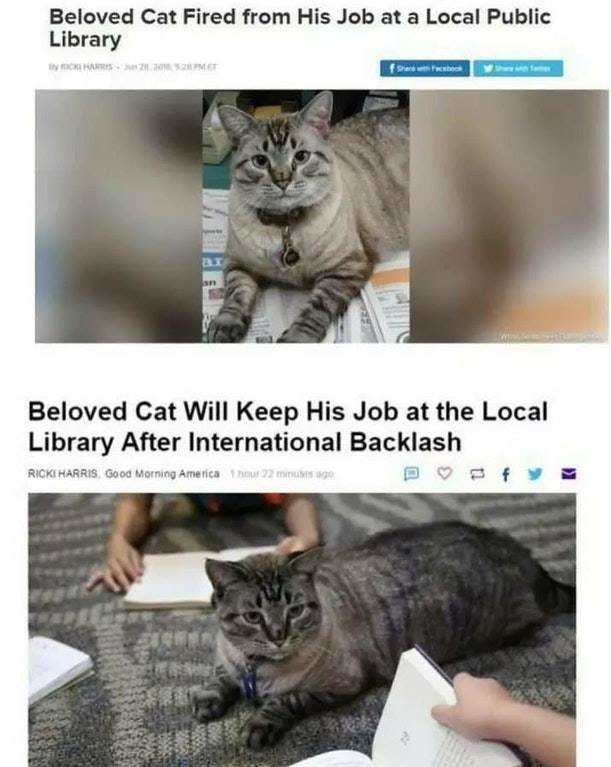 13 Jokes of the day for Friday, 17 August 2018