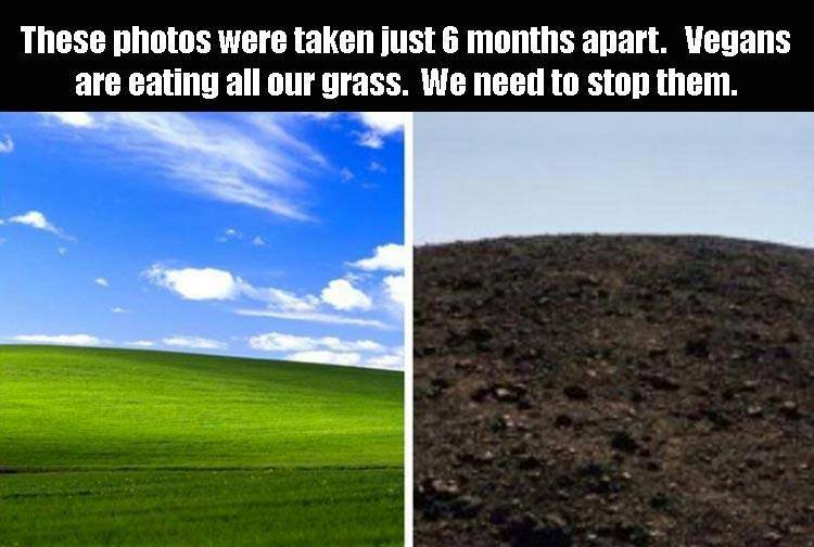 21 Jokes of the day for Sunday, 03 February 2019