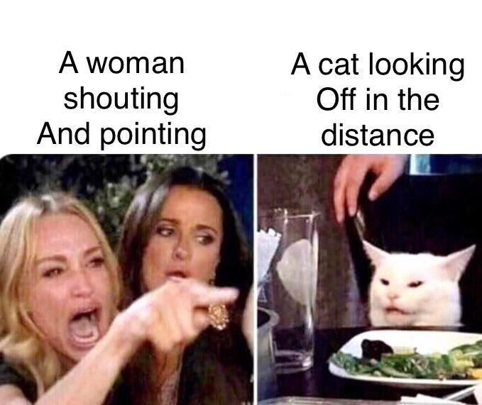 "50+ Best ""Woman Yelling at a Cat"" Memes That Have Taken Over the Internet"